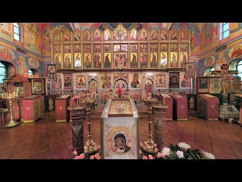 Embedded thumbnail for 2017.07.09. Ven. David of Thessalonica. Tikhvin Icon of the Theotokos. Divine Liturgy