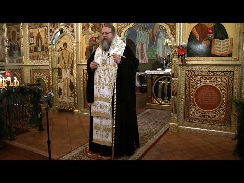 Embedded thumbnail for 2017.01.15. Theophany as the Feast of our Enlightenment. Sermon by Metropolitan Jonah (Paffhausen)